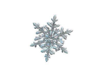 Photograph - Snowflake 2018-02-21 N2 White by Alexey Kljatov