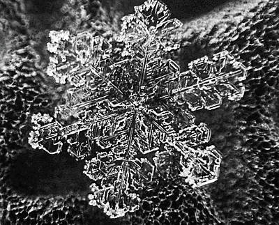 Photograph - Snowflake Close-up Snow Winter Macro by Toby McGuire