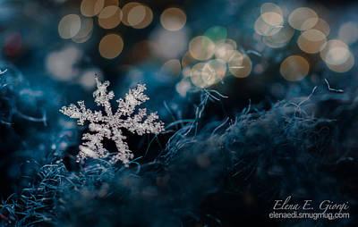 Photograph - Snowflake by Elena E Giorgi