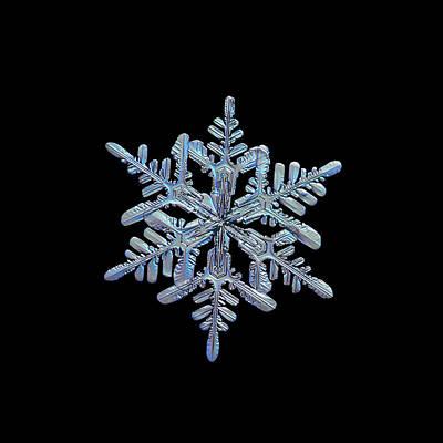 Photograph - Snowflake Macro Photo - 13 February 2017 - 1 Black by Alexey Kljatov