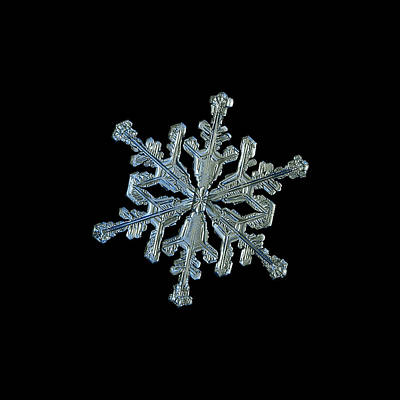Photograph - Snowflake Macro Photo - 13 February 2017 - 2 Black by Alexey Kljatov