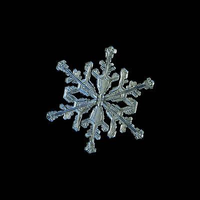 Photograph - Snowflake Macro Photo - 13 February 2017 - 2 Black by Alexey Kljatov