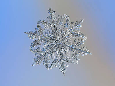 Photograph - Snowflake Macro Photo - 13 February 2017 - 3 by Alexey Kljatov