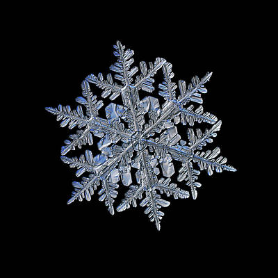 Photograph - Snowflake Macro Photo - 13 February 2017 - 3 Black by Alexey Kljatov
