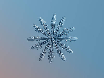 Star Photograph - Snowflake Photo - Chrome by Alexey Kljatov