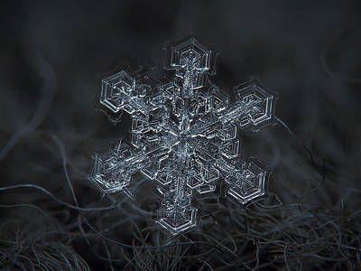 Snowfall Photograph - Snowflake Photo - Complicated Thing by Alexey Kljatov