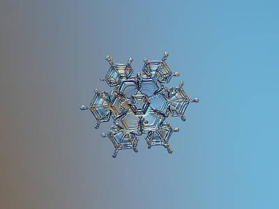 Snowflake Photo - Flying Castle Art Print