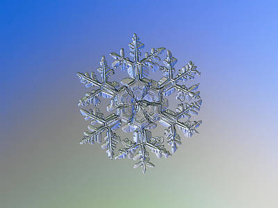 Photograph - Snowflake Photo - Gardener's Dream Alternate by Alexey Kljatov