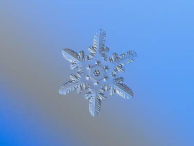 Photograph - Snowflake Photo - Heart-powered Star Alternate by Alexey Kljatov