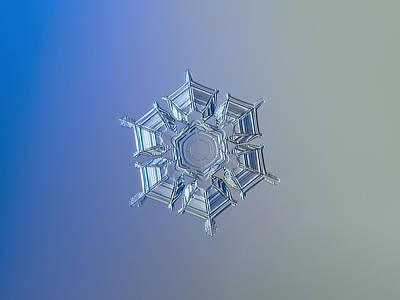 Color Photograph - Snowflake Photo - Ice Relief by Alexey Kljatov