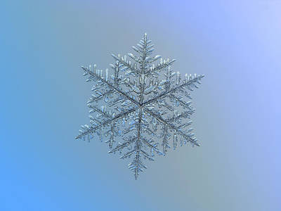 Snowflake Photo - Majestic Crystal Art Print