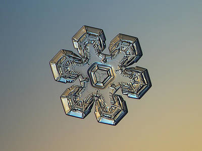 Photograph - Snowflake Photo - Massive Gold by Alexey Kljatov