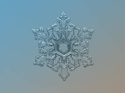 Snowflake Photo - Ornate Pattern Art Print