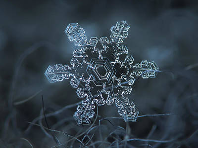 Photograph - Snowflake Photo - Slight Asymmetry by Alexey Kljatov