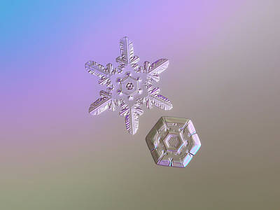 Photograph - Snowflake Photo - Two Hearts by Alexey Kljatov