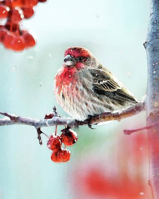 Finch Digital Art - Snowflakes by Betty LaRue