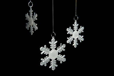 Photograph - Snowflakes by Helen Northcott