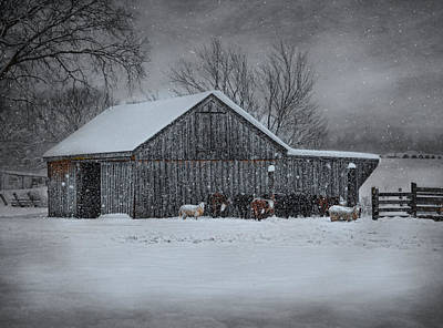 Snowflakes On The Farm Art Print