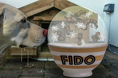 Doghouses Digital Art - Snowglobe Envy by Randy Turnbow