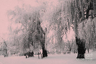 Photograph - Snowing Again by Julie Lueders