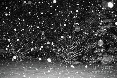 Photograph - Snowing At Night by Barbara McMahon