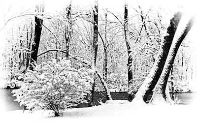 Photograph - Snowing By The Creek by Carolyn Derstine