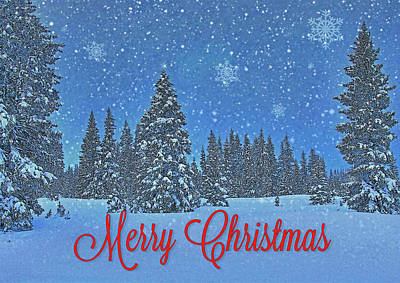 Photograph - Snowing Christmas Card by Roy Kastning