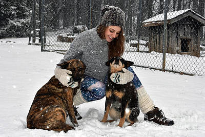 Blue Healer Photograph - Snowing Dogs by Christal Randolph