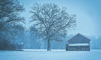 Photograph - Snowing On The Farm by Pixabay