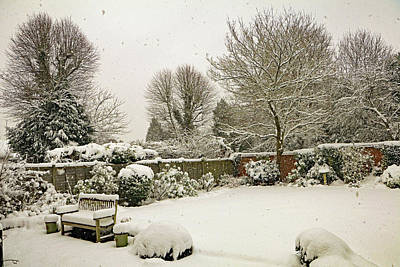 Photograph - Snowing  by Tony Murtagh
