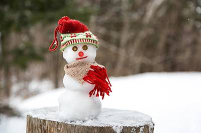 Photograph - Snowman Day by Karin Pinkham