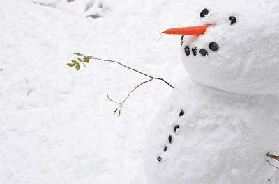 Photograph - Snowman by Jeremy Voisey