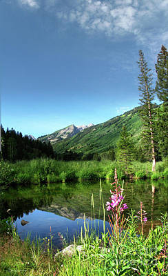 Kitchen Spices And Herbs - Snowmass Creek Pond - Maroon Bells Wilderness - Colorado by Bruce Lemons