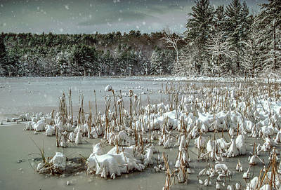 Photograph - Snowscape by Gary Shepard