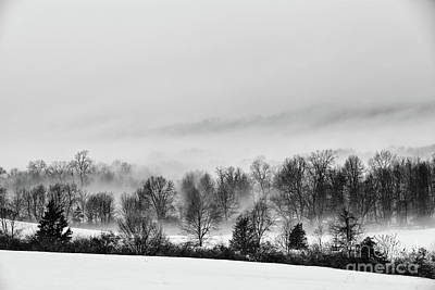 Photograph - Snowscape by Nicki McManus