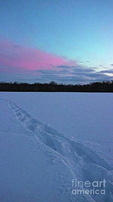 Photograph - Snowshoe Tracks by Erick Schmidt