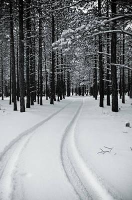 Photograph - Snowtracks by Scott Sawyer