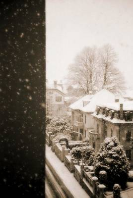 Photograph - Snowy Afternoon by Silvia Ganora