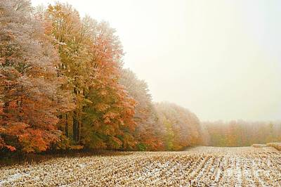 Corn Photograph - Snowy Autumn Field by Terri Gostola