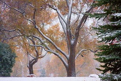 Snowy Autumn Landscape Art Print by James BO  Insogna