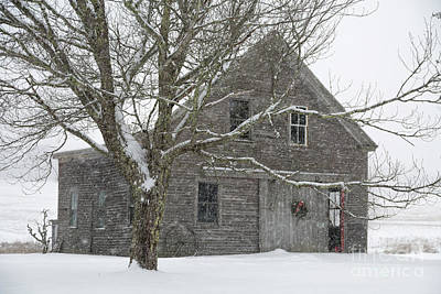 Photograph - Snowy Barn by Karin Pinkham