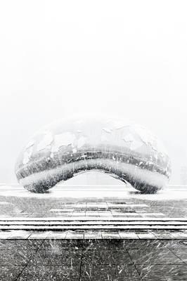 Photograph - Snowy Bean by Sebastian Musial