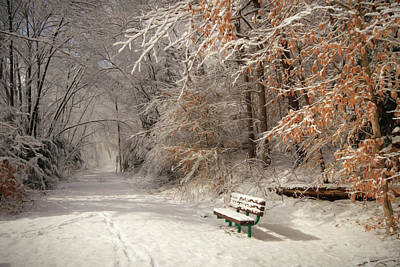 Snowy Bench Art Print by Lori Deiter
