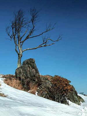 Photograph - Snowy Centerpiece In The Blue Ridge by Dan Carmichael
