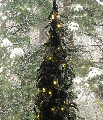Photograph - Snowy Christmas by Peg Toliver