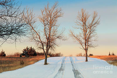Photograph - Snowy Convergence by Richard Smith