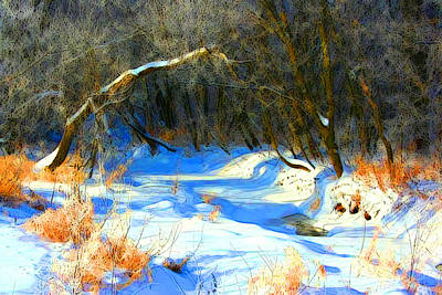 Photograph - Snowy Creek Etc X by Julie Lueders