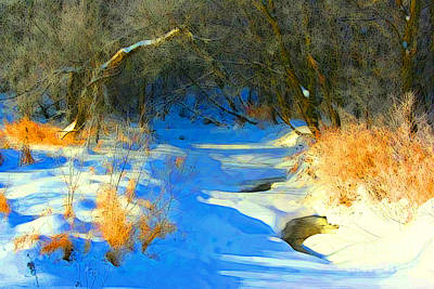 Photograph - Snowy Creek Etc Xy by Julie Lueders