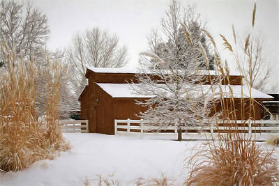 Photograph - Snowy Day At The Park by Donna Kennedy