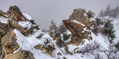 Photograph - Snowy Desolation by Spencer Baugh